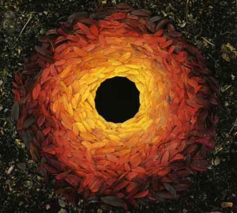 Andy Goldsworthy, Down leaves laid around hole, 1987